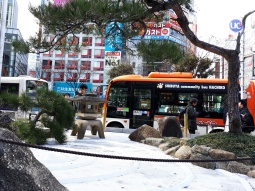 "Ein Zen-Garten vorm Bahnhof ""Shibuya"""