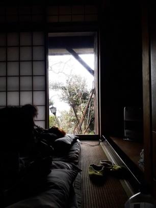 Der erste Blick aus dem Fenster am ersten Morgen in Kyoto