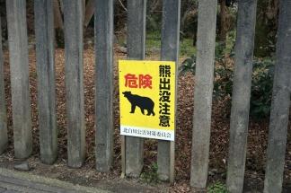Vorsicht, Bären! Wahnsinnig beruhigend.