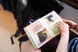 Dieses Buch erzählte mehr über die einzelnen Katzen