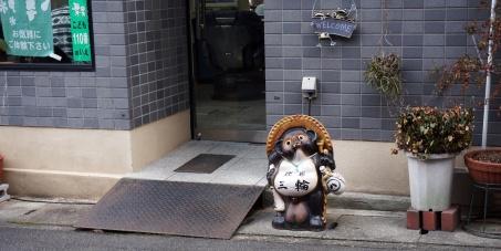 Ein Tanuki auf unserem Weg.